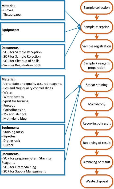 Image Flow Chart Gram Sop Laboratory Quality Stepwise