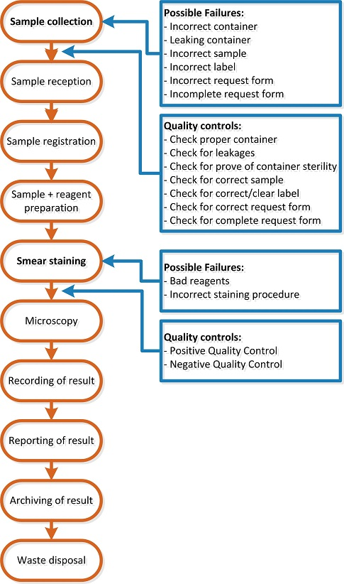 Image Flow Chart Gram Qc1 Laboratory Quality Stepwise