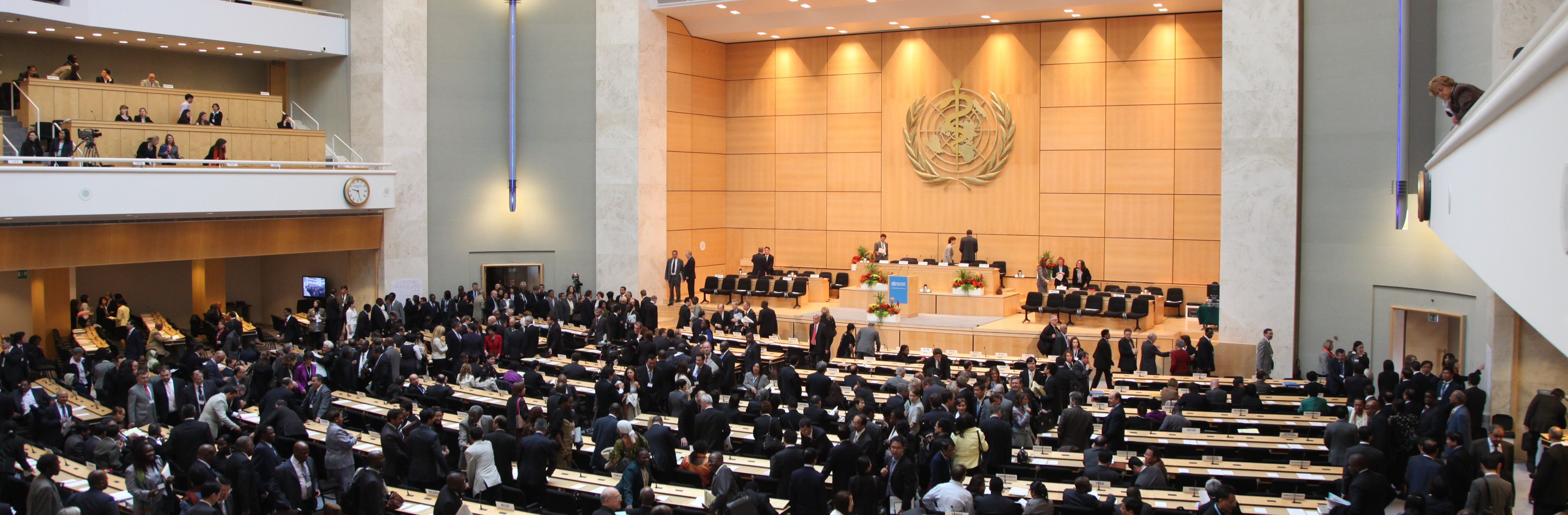 72nd session of the World Health Assembly